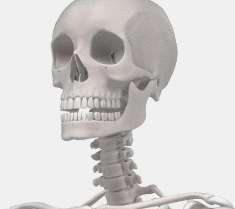 턱관절 부분